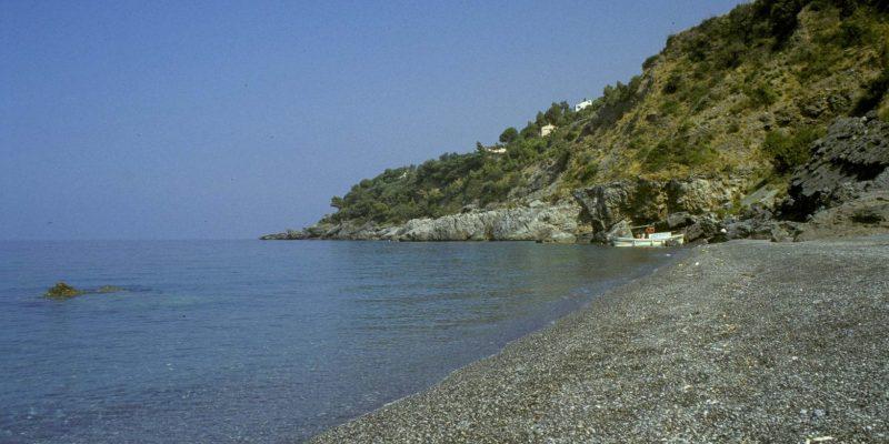 Darsena beach