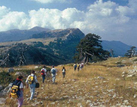 Escursione Pollino Maratea Basilicata