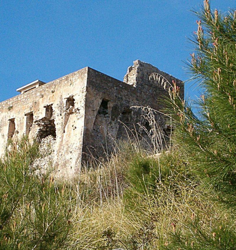torre asino